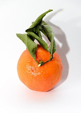 Mandarin orange (Citrus reticulata) with green leaves, close up isolated. 免版税图像