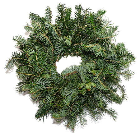 Conifer christmas circle decoration close up