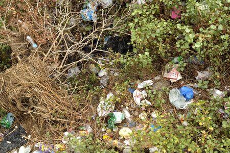 falta de respeto: perder a trav�s de las plantas: botella, bolsas de pl�stico ...