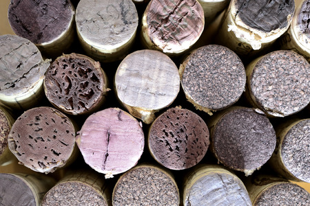 terroir: vertically arrenged wine corks. repetitive pattern