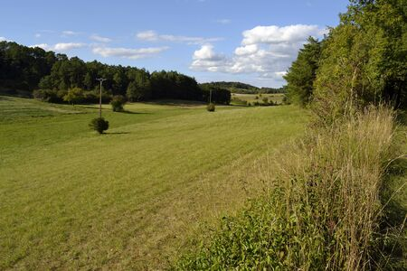 french countryside: Meadow in the french countryside. Agonac, France Stock Photo