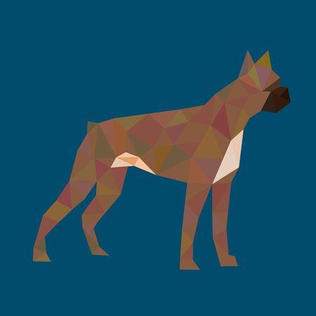 boxer dog: polygon boxer dog