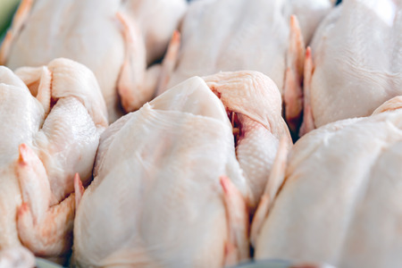 flesh eating animal: Raw  butchered chicken in queue Stock Photo