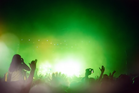 partying: Party people attending a concert and partying Stock Photo