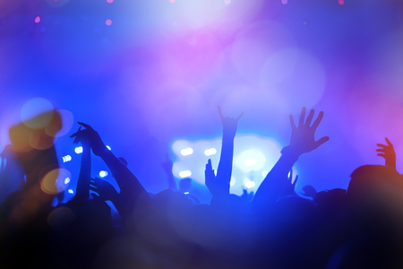 people partying: People partying at a concert and enjoying live music