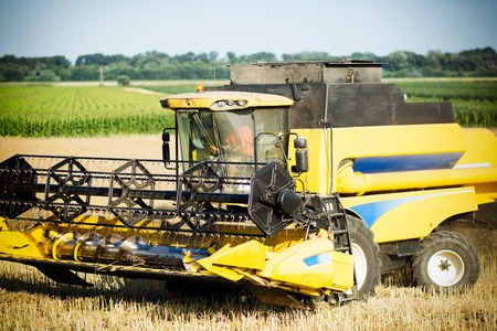 agricultura: Agricultura machine harvesting crop in fields