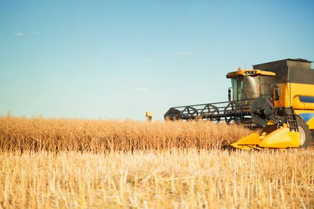 Agricultura machine harvesting crop in fields