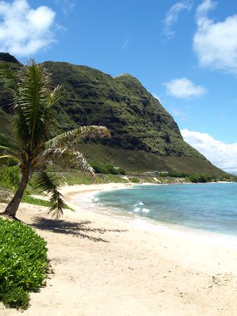夏にハワイのビーチの静かな海岸