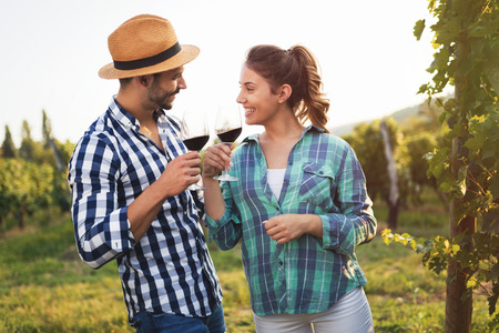 People sampling and tasting wines in vineyard Stok Fotoğraf - 84037103