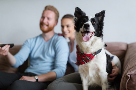 Beautiful couple watching television at home with their dog Stok Fotoğraf