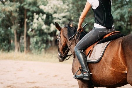 Picture of young girl riding her horse Reklamní fotografie - 84359806