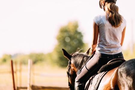 젊은 예쁜 여자가 말을 타고 그림