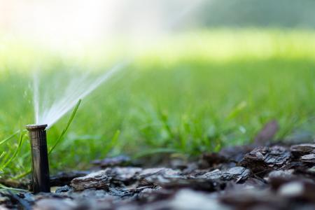 関数の灌漑システム 写真素材