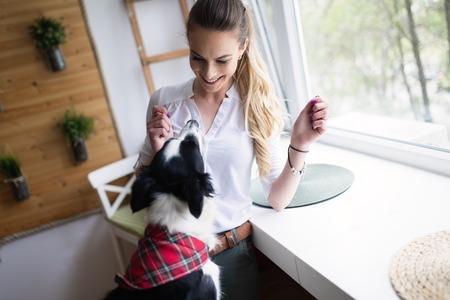 집에서 그녀의 행복한 강아지와 놀고 아름다운 여자 스톡 콘텐츠