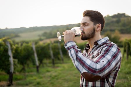 Winegrower のブドウ畑でワインの試飲