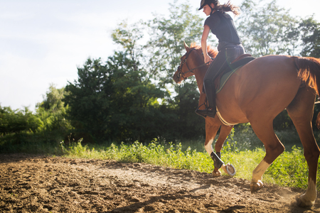 Portrait of young woman riding horse in countryside Imagens