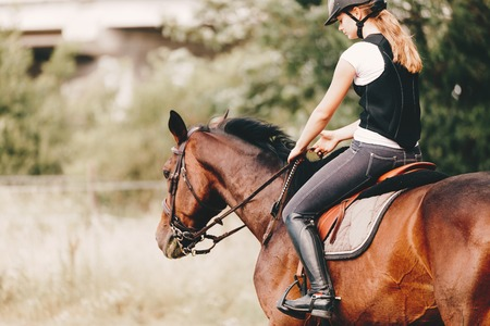 Picture of young girl riding her horse Reklamní fotografie