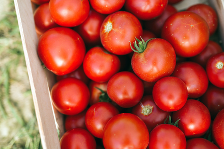 Picture of many red tomatoes in wooden crate Stock Photo