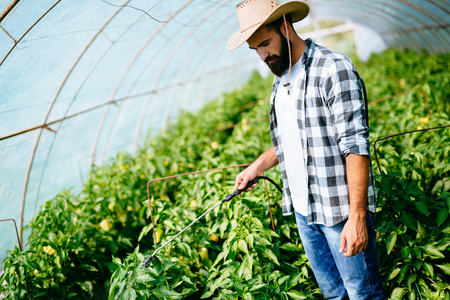 Jonge landbouwer die zijn installaties beschermt met chemische producten