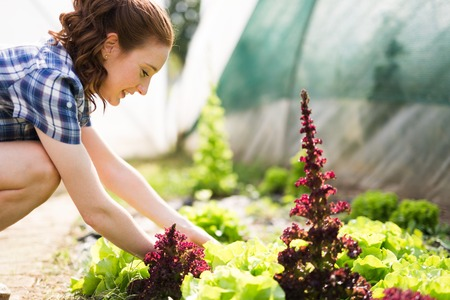 Young happy woman working in her greenhouse