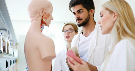 Students of medicine examining anatomical model in classroom Stock Photo