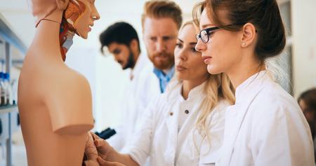 Students of medicine examining anatomical model in classroom Foto de archivo