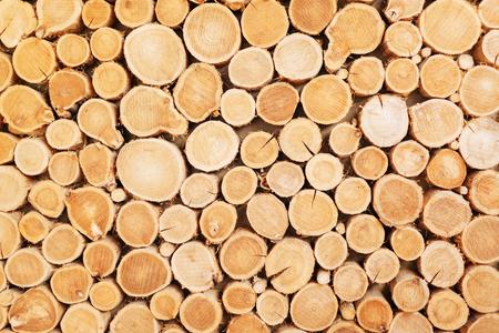 Texture de journal en bois Banque d'images - 90455007