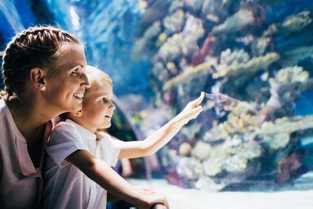 Mother and son watching sea life in oceanarium Banco de Imagens