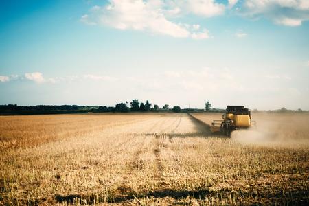 Imagen de cosechadora cosechadora cosechando cultivos