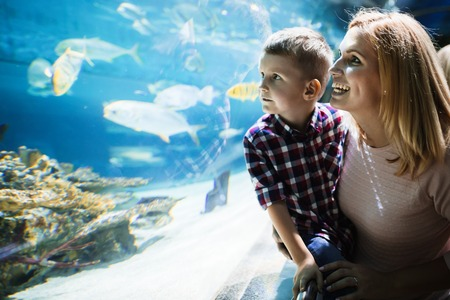 Mother and her son looking at aquarium Stok Fotoğraf - 106868175
