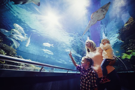 Happy family looking at fish tank at the aquarium Stock Photo