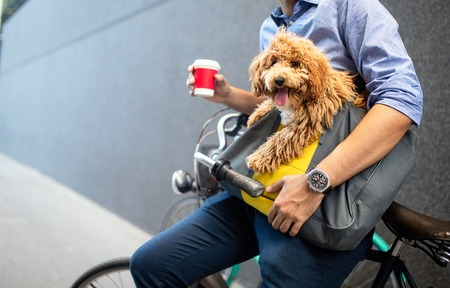 Young man drinking coffee while sitting on his bicycle with dog outdoors Фото со стока - 120794707