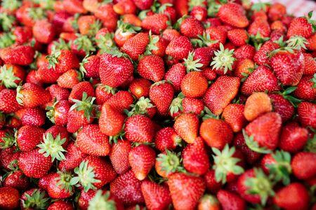 Fresa. Bayas orgánicas frescas macro. Fondo de frutas