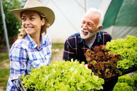 Abuelo cultivando verduras orgánicas con nietos y familia en la granja Foto de archivo
