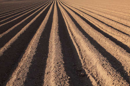 A recently ploughed field with the furrows running away from the camera into the distance Stock Photo