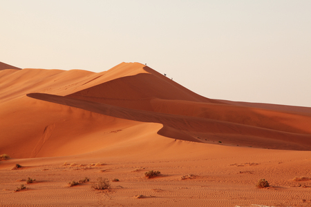 sand dunes: Sand dunes in Namibia
