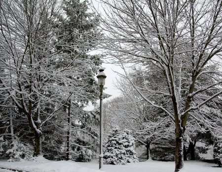lampost: Lampost with Snow