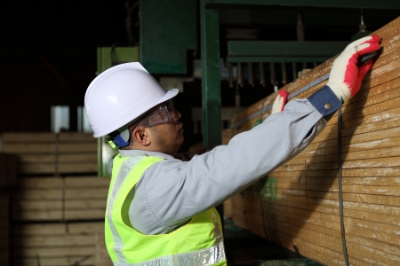 Worker carpenter measures the wood photo