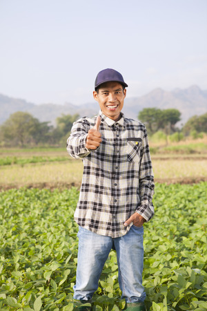 Farmers  on soybean field with giving thumb up Imagens