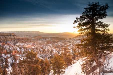 Bryce Canyon during winter photo