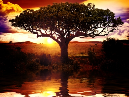 Africa Sunset Stock Photo - 17971566