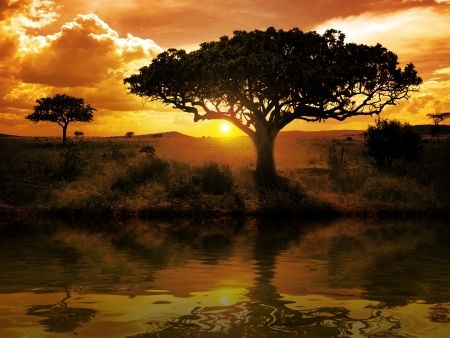 kruger national park: Africa Sunset
