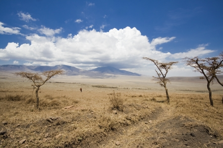 Africa Landscape Ngorongoro