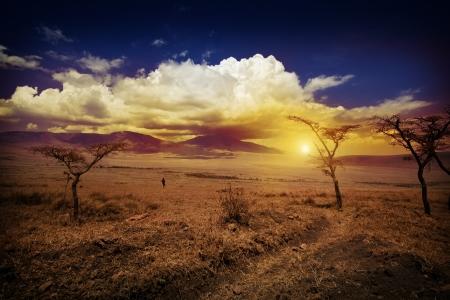 kruger: Africa Sunset