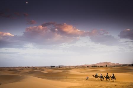 inhospitable: Morocco Desert Stock Photo