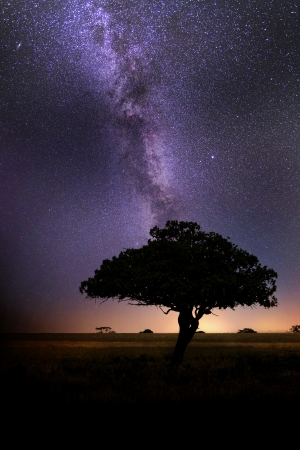 erosion: Milky Way in African Savannah