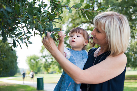 nut trees: Grandmother and her granddaughter looking at the tree in the park Stock Photo