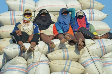 sack truck: A group of worker resting on top of Rice Sack