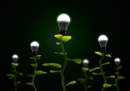 Sustainable or renewable green energy concept illustrated with a tree seedling grow and lit a led bulb as fruit. Mixed media.