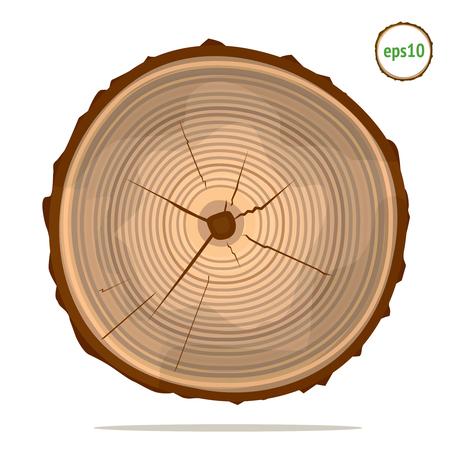 Tree-rings on log